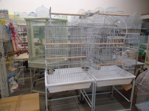 Cages for Various Size Birds