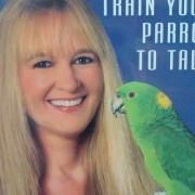 bird video – train your parrot