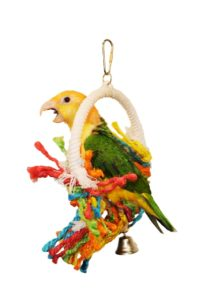 Medium Rope Preening Swing