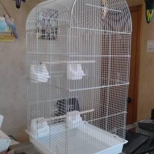 dome topped bird cage